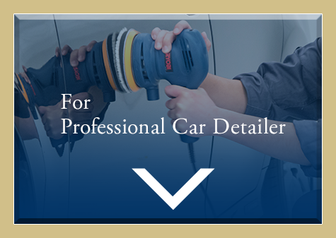 Professional Car Detailer